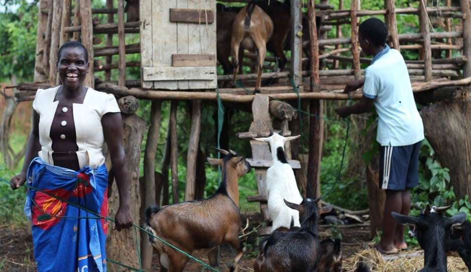 Dalitso and her son tend to their family goats