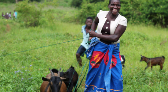 Goats, Gardens, and Business Training Empower Mother in Neno