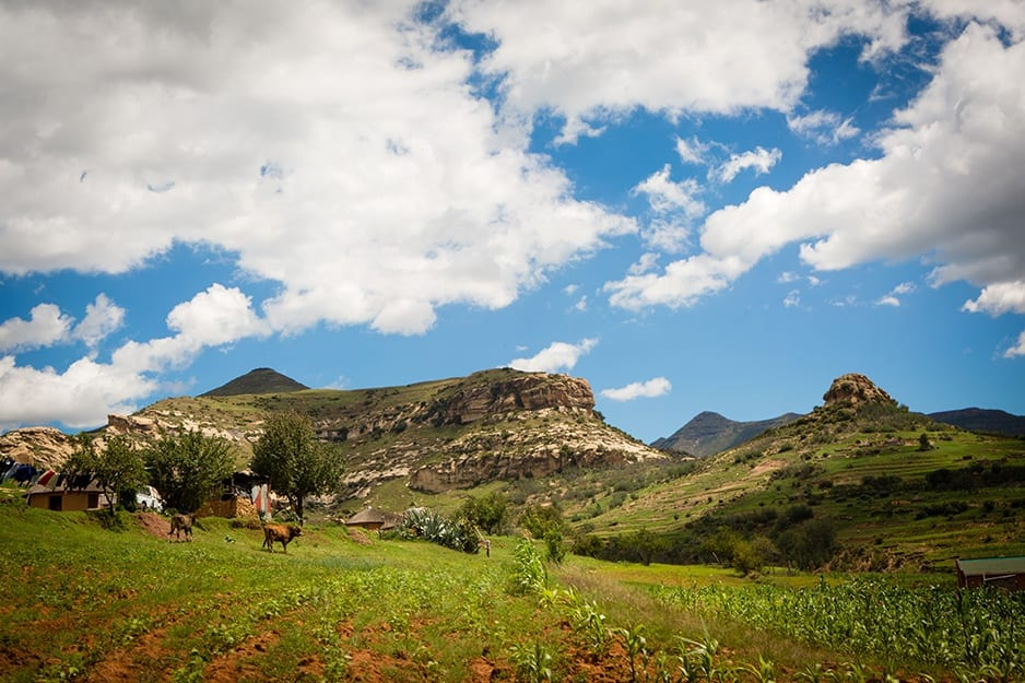 Landscape view in Lesotho of a farm field with rocky hill in the background